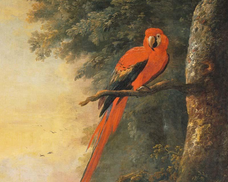 Panneau d coratif perroquet rouge willem van royen - Papier peint panneau decoratif ...