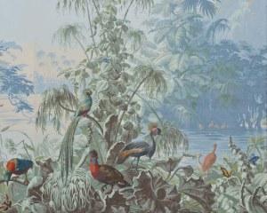 Le Brésil - 1862