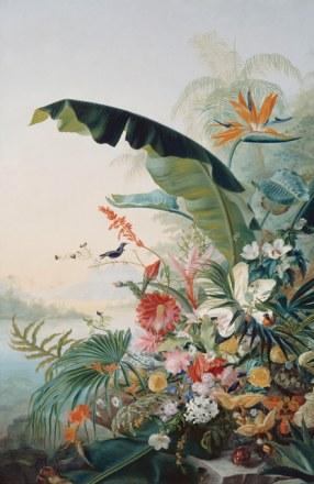 Fleur exotique - Tableau