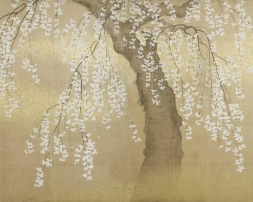papier peint japonais cerisier en fleurs papiers de paris. Black Bedroom Furniture Sets. Home Design Ideas