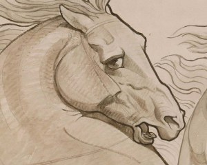 Horse sketch- Wallpaper mural
