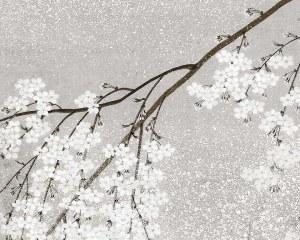 Ciliergo giapponese - Carta da parati