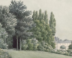 Paesaggio panoramico  - Carta de Parati
