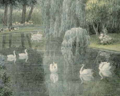 Swan lake - Carta de Parati