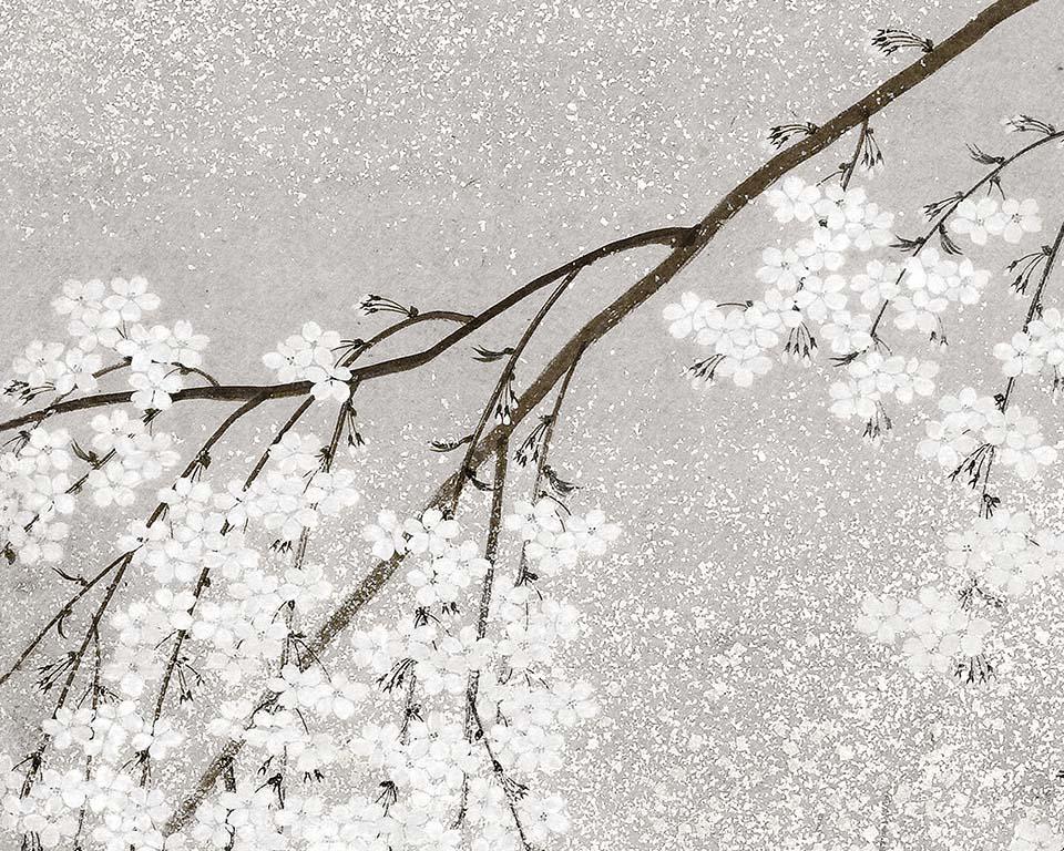 Papier Peint Japonais Cerisier En Fleurs Papiers De Paris