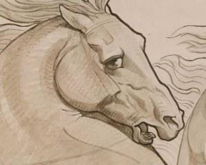 Cheval cabré - Papier peint